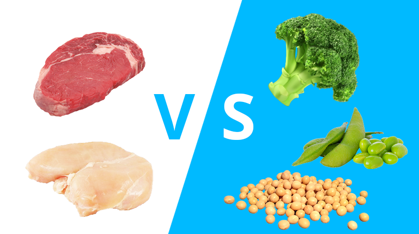 dierlijke of plantaardige eiwitten