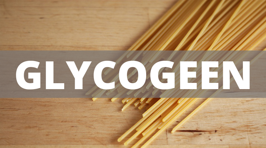 wat-is-glycogeen