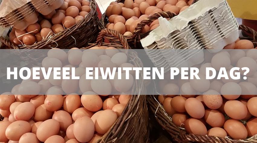 hoeveel-eiwitten-per-dag