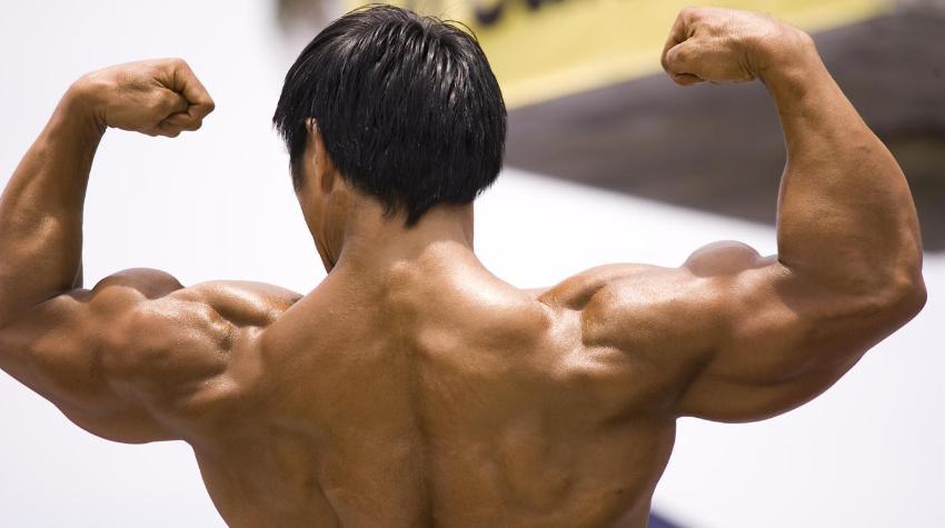 hoeveel spieren heeft een mens
