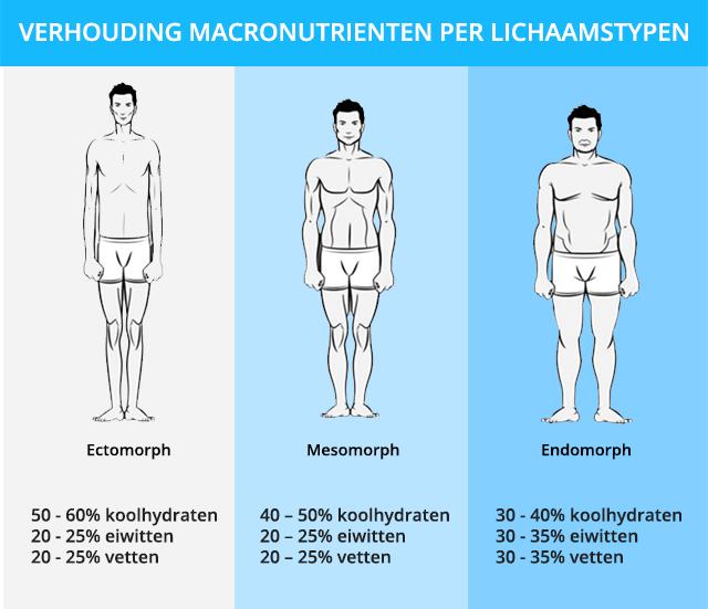 macronutrienten spieren kweken