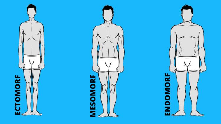 wat-is-jouw-lichaamstype